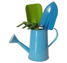 Little Genius - Watering Can with Gardening Tool